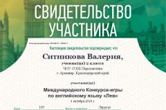 chapter_member_Sitnikova_Valeriya 3